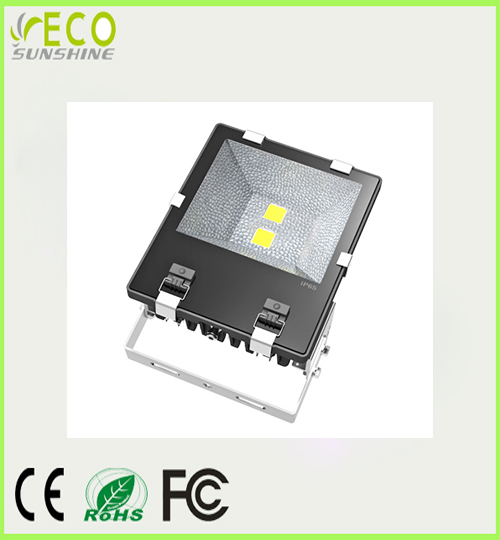 100W LED New Flood light